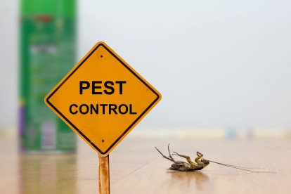 Pest Contol in Brompton, SW3. Call Now 020 8166 9746