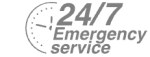 24/7 Emergency Service Pest Control in Brompton, SW3. Call Now! 020 8166 9746